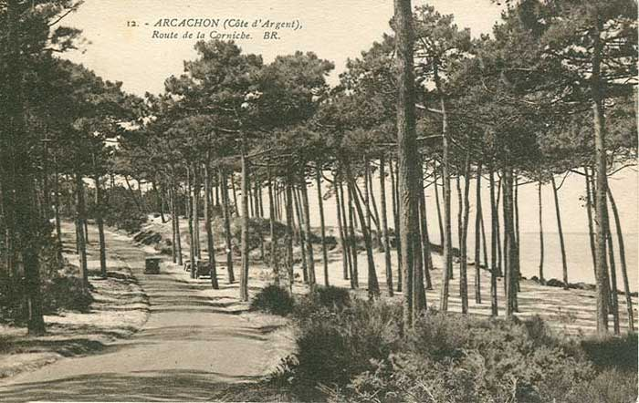 Parc des Abatilles