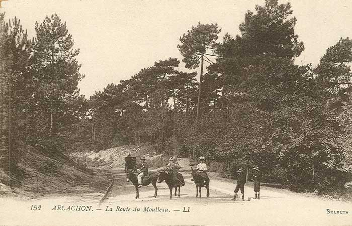 Route du Moulleau via le Parc des Abatilles