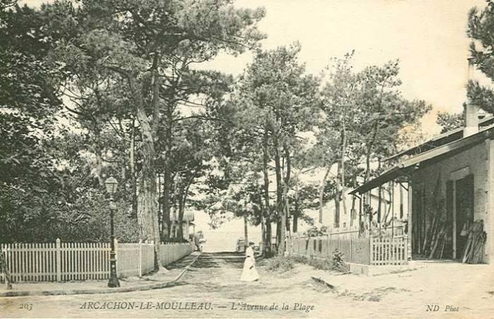 Avenue de Montaut