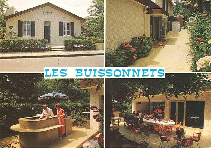 Les Buissonnets